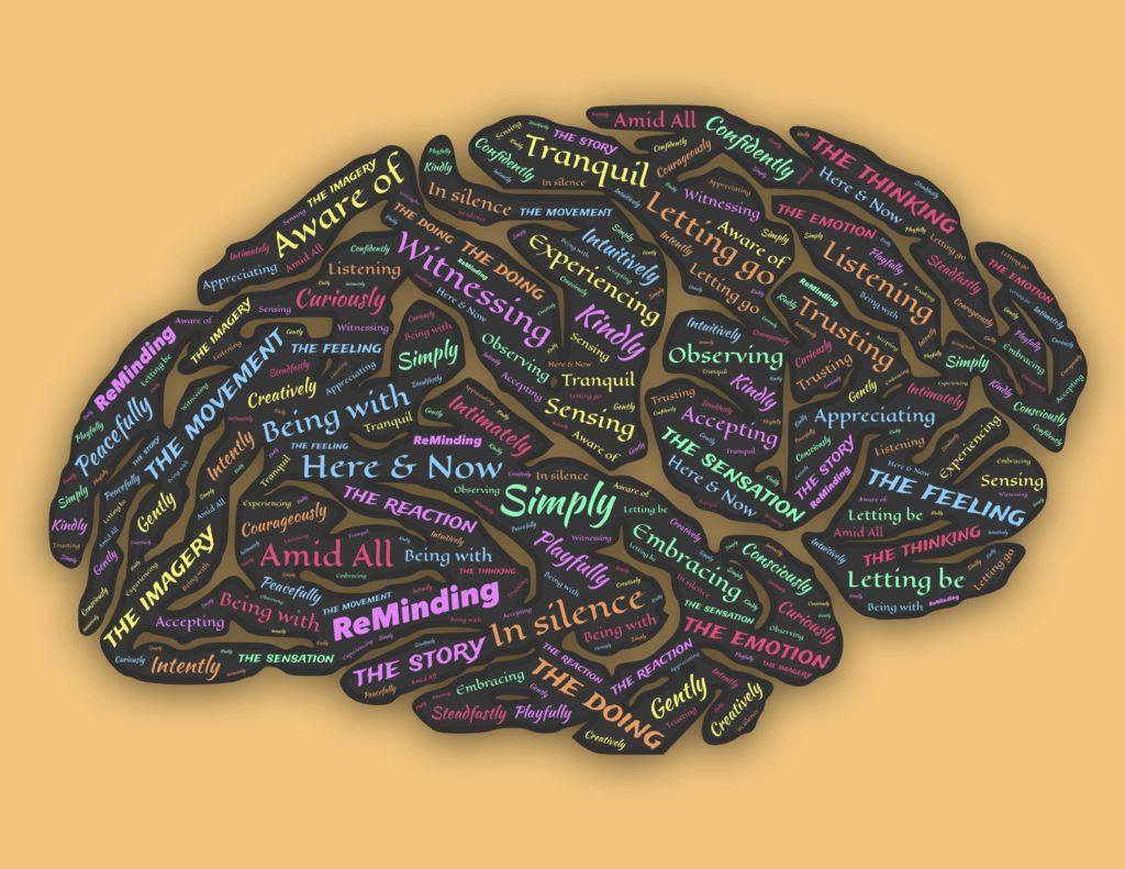 Cerveau et émotions